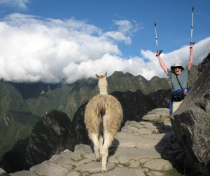 While climbing Macchu Picchu, Karen Beatty had to share the wild and winding trail with fellow backpackers … and a llama or two