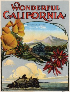 Transcontinental railroad companies vigorously promoted Southern California's agricultural/gardening potential.
