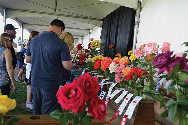 Step inside the Coronado Flower Show